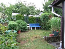Foto 8 Kleingarten preiswert abzugeben