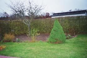 Foto 6 Kleingarten, im KGV