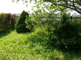 Foto 7 Kleingarten(privat) mit Bungalow in Bollberg/Stadtroda zu verkaufen