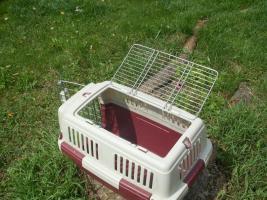 Foto 2 Kleintier-Transportbox zu verkaufen