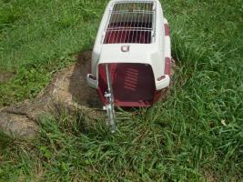 Foto 2 Kleintiertransportbox  Clipper zu verkaufen