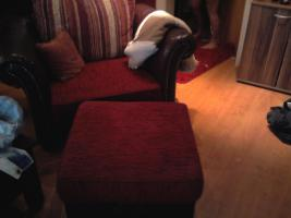 Foto 4 Kolonial Sofa..3,5er, 2er, 1er u Hocker 1,5 Jahr alt !
