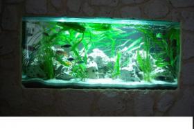 Komplett Aquarium mit Technik und inhalt