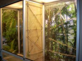 Foto 4 Komplett Terrarium mit Zubehör