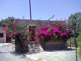 Foto 2 Kreta Urlaub im Epikur