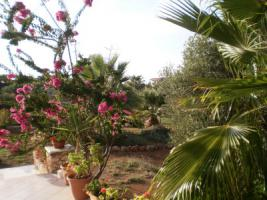 Foto 4 Kreta Urlaub im Epikur