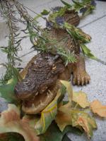 Foto 2 Krokodil - t�uschend echt! -46cm- Tolle Aussendeko... wie lebensecht!