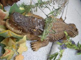 Foto 3 Krokodil - t�uschend echt! -46cm- Tolle Aussendeko... wie lebensecht!
