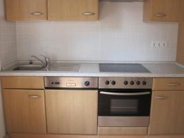 Küche 310cm inkl. Geschirrspüler, E-Herd+Ceranfeld, Kühlschrank & Kamin-Dunstabzugshaube