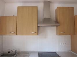 Foto 2 Küche 310cm inkl. Geschirrspüler, E-Herd+Ceranfeld, Kühlschrank & Kamin-Dunstabzugshaube