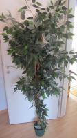 Künstlicher Baum Ficus
