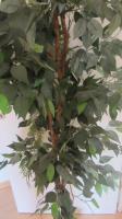 Foto 2 Künstlicher Baum Ficus