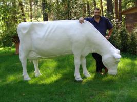 Kuh für Ihren Garten als Deko Tel. 033767 30750