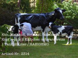 Kuh, Melkkuh, Holstein, ''Adelchen'' Kopf rechts 2 Kälbchen schwarz weiss 1 Tank 20Liter / HAEIGEMO.DE  #Artikel-Nr.: 2314