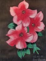 Kunstbilder Pastell / Acryl