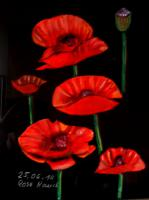 Foto 4 Kunstbilder Pastell / Acryl