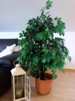 Kunstpflanze Ficus Benjamini grün 1,40 Meter