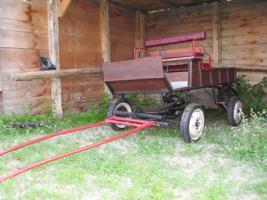 Kutsche für Ponys oder Kleinpferde zu verkaufen !