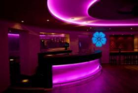 Foto 10 LED Farbwechsel LED Spot MR16 Cree vom LED Shop L-Tronic