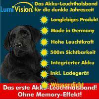 LED-LEUCHTHALSBAND FÜR IHREN LIEBLING