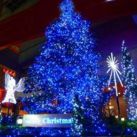 LED  Weihnachten Lichtkette 2013 kaufen 10m 100 blau