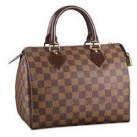 LOUIS VUITTON SPEEDY 25 DAMIER EBENE CANVAS 3 Monate alt RECHNUNG