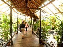Foto 16 Land, Liegenschaft, Eigentum in Thailand erwerben oder aber speziell...