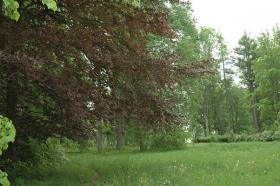 Foto 9 Landgut in der Nähe von Tukums in Lettland