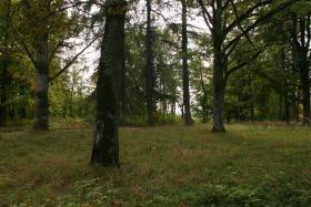 Foto 14 Landgut in der Nähe von Tukums in Lettland