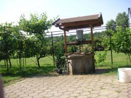 Foto 7 Landhaus in Westungarn