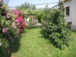 Foto 9 Landhaus in Westungarn