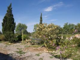 Foto 3 Langzeitmiete Mallorca: 130 qm Finca mit Heizung nahe Santanyi