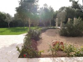 Foto 9 Langzeitmiete Mallorca: 250 m2 Finca mit Pool und Nebengebäude in Porreres