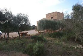 Foto 6 Langzeitmiete Mallorca: 300 m2 Pool Finca mit Meerblick zwischen Ses Salines und Colonia Sant Jordi