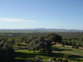 Foto 4 Langzeitmiete Mallorca: Einzigartige Pool Finca mit Olivenplantage auf einem 26 HA Grundst�ck in erh�hter Lage von Campos