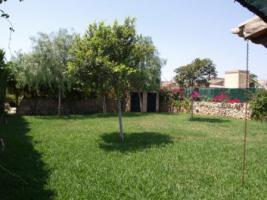 Foto 3 Langzeitmiete Mallorca: Freistehendes Naturstein Stadthaus / Chalet am Ortsrand von Santanyi