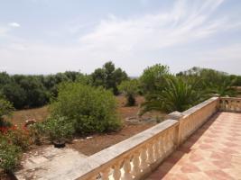 Foto 3 Langzeitmiete Mallorca: Gemütliche kleine Finca nahe Santanyi