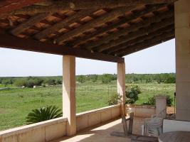 Foto 4 Langzeitmiete Mallorca: Kleine Finca in Ses Salines mit 18.000 m2 Grundst�ck