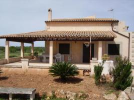 Foto 9 Langzeitmiete Mallorca: Kleine Finca in Ses Salines mit 18.000 m2 Grundstück zur Langzeitvermietung
