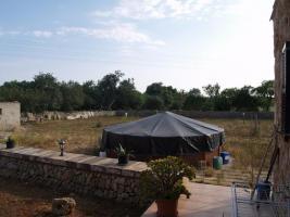Foto 3 Langzeitmiete Mallorca: Kleine möblierte Natursteinfinca nahe Santanyi - Pferdehaltung möglich