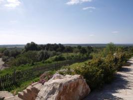 Foto 4 Langzeitmiete Mallorca: Pool Finca mit Casita und Meerblick nahe Santanyi