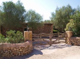 Foto 2 Langzeitmiete Mallorca: Romantische Finca mit Pool und einem Gästehaus nahe Alqueria Blanca