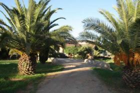Foto 2 Langzeitmiete Mallorca: Ruhig gelegene Pool Finca zwischen Campos und Ses Salines