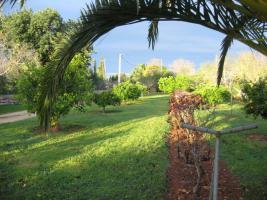 Foto 5 Langzeitvermietung Mallorca: Charmante kleine Finca mit 4000 qm Grundstück (Pferdehaltung) bei Llucmajor