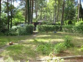 Foto 5 Laube mit großem Grundstück in unmittelbarer Seenhähe (Üdersee)