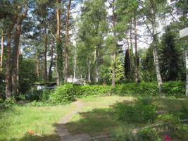 Foto 7 Laube mit großem Grundstück in unmittelbarer Seenhähe (Üdersee)