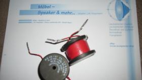 Foto 5 Lautsprecher-Selbstbau