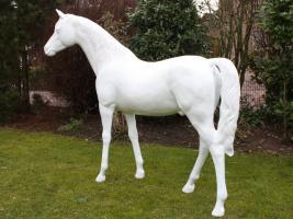 Lebensgrosses Pferd Rohling Araber Hengst