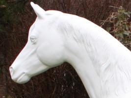 Foto 5 Lebensgrosses Pferd Rohling Araber Hengst