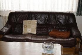 Ledercoutsch mit passendem Tisch